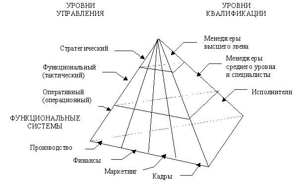 Типы информационных систем в